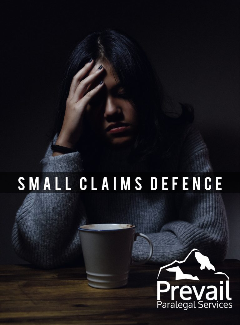 Small Claims Defence